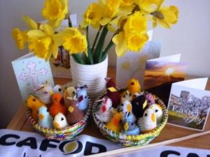 web pageP1010819 Easter chicks 4